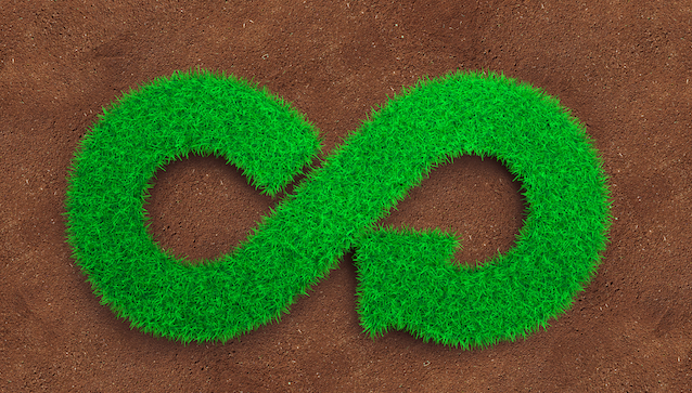 Eco,And,Circular,Economy,Concept.,The,Green,Grass,In,Form