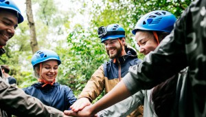 Team,Building,Outdoor,In,The,Forest